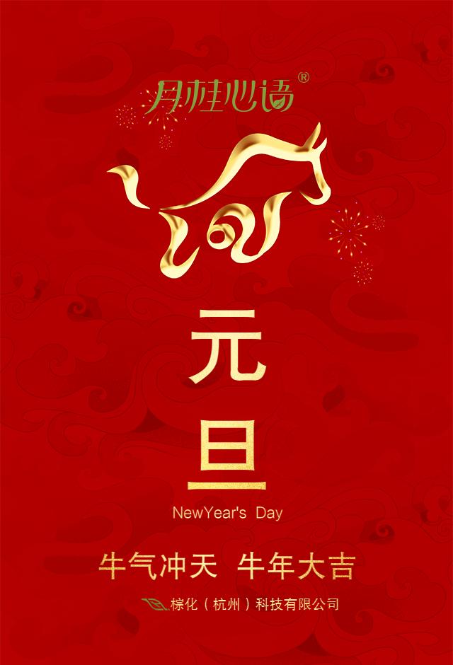 棕化(杭州)科技有限公司恭祝各位朋友2021年财源广进心想事成插图